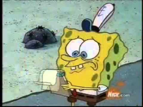 spongebob essay clip With tenor, maker of gif keyboard, add popular spongebob writing essay animated gifs to your conversations share the best gifs now.