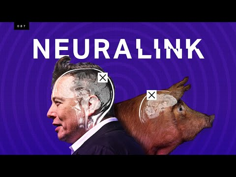 Elon Musk's Neuralink: what's science and what's not