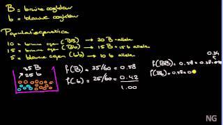 15.1 - De wet van Hardy-Weinberg