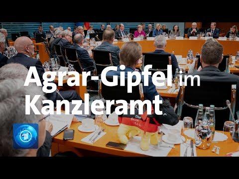 Kanzlerin Merkel Verspricht Bauern Mehr Mitsprache Bei Umweltauflagen