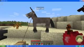 Jak przywiązywać zwierzęta i wyposażać osły