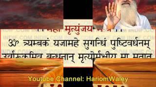 108 times Mahamrutyunjay Mantra Jap by Sri Sureshanandji