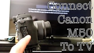 canon m50 video test