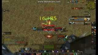 Rottweiler Arena With Discipline Priest 4