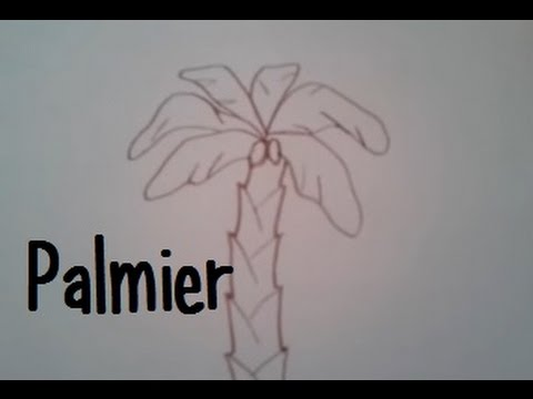 dessiner un palmier youtube. Black Bedroom Furniture Sets. Home Design Ideas