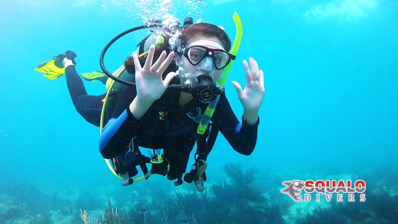 Squalo divers scuba trips youtube squalo divers scuba trips 1betcityfo Gallery