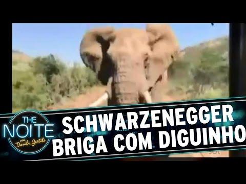 The Noite (09/06/16) - Saideira da Noite: Arnold Schwarzenegger briga com Diguinho Coruja