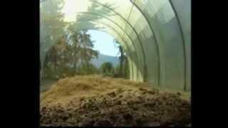 Utilisation de margines et des grignons d'olives sur les terres agricoles