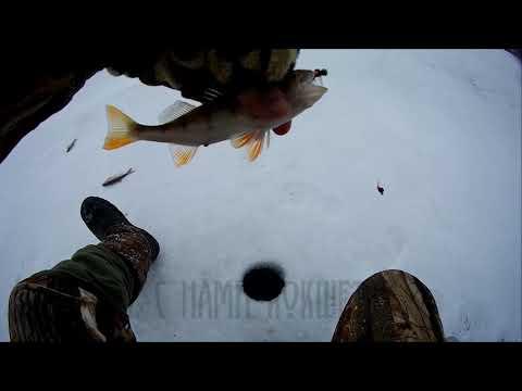 Долгожданная рыбалка в Зеренде. Зимняя рыбалка 2020 Казахстан