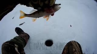 Долгожданная рыбалка в Зеренде Зимняя рыбалка 2020 Казахстан