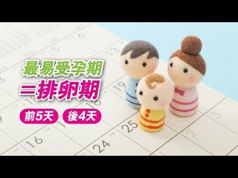 【養生教室vol.3】最易受孕期
