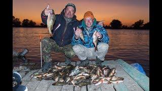 Прогноз клева - Русская рыбалка