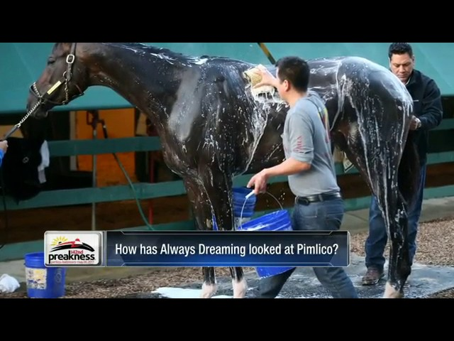 donna-brothers-talks-always-dreaming-at-the-preakness-stakes