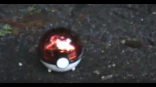 Real Life Pokemon 2