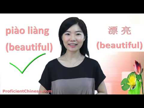 Lesson 1: Introduction to Mandarin Chinese