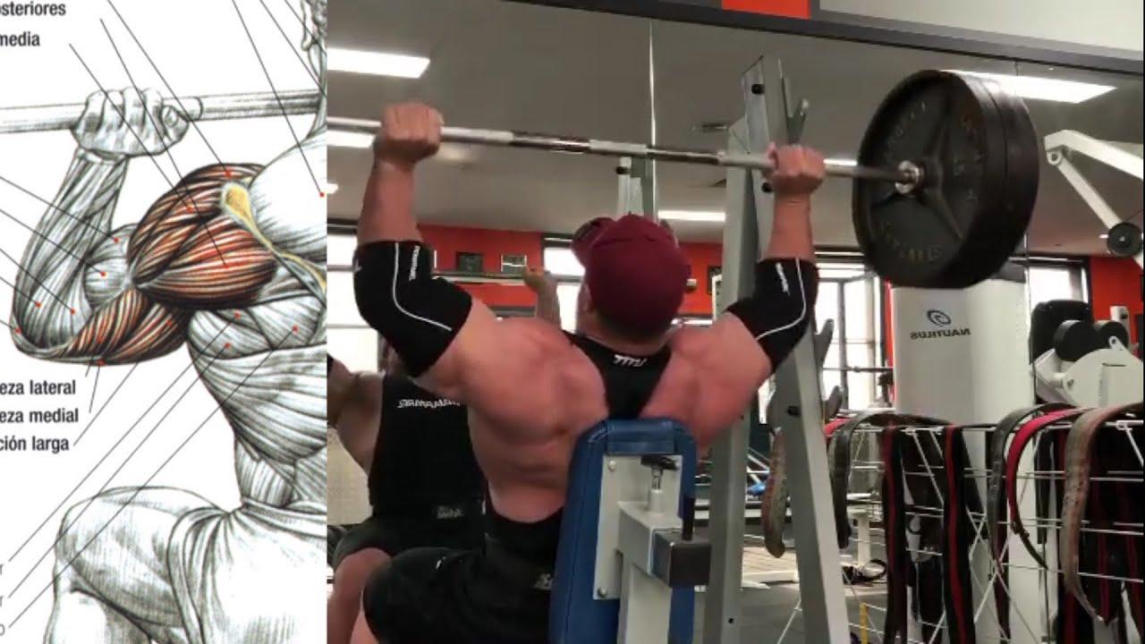 Shoulders Workout, Hombros Impresionantes con estos Ejercicios