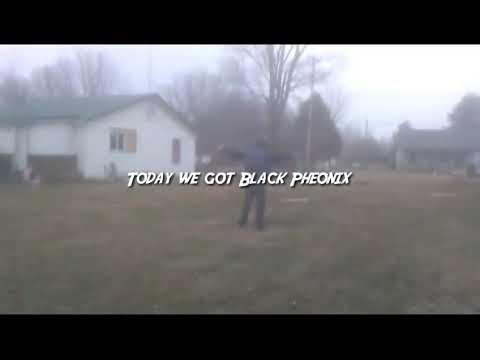 Black Pheonix vs. Scronnix| AHT Wrestling| Scronnixs Debut