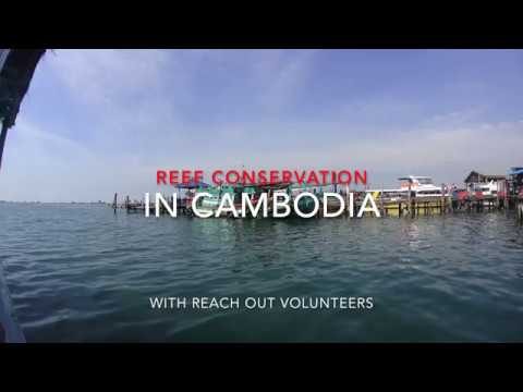 Cambodia Koh Rong - Marine Conservation - Reach Out Volunteers