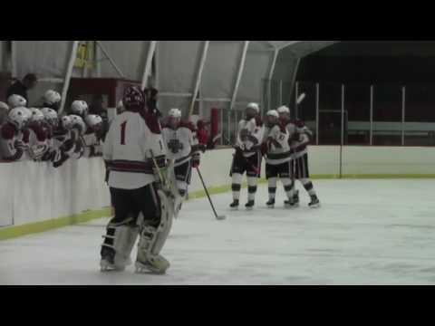 NCCS - Saranac Hockey Q-Final  2-21-17