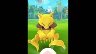 [포켓몬고][Pokemongo] 포켓몬 희귀캐 캐이시 …