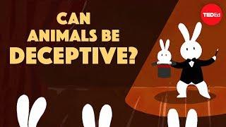 Can animals be deceptive? - Eldridge Adams