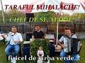 Download CRISTINA  GRADINARU...FIRICEL DE IARBA VERDE..CHEF SF. MARIE..LIVE