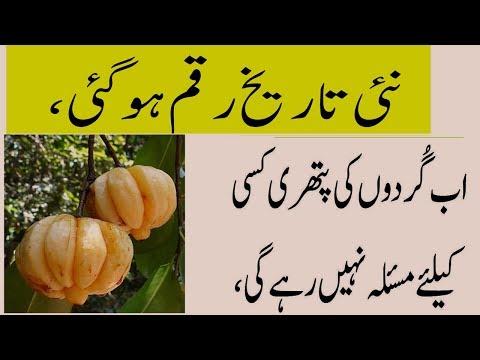 How To Remove Kidneys Stones Naturally Ayurveda