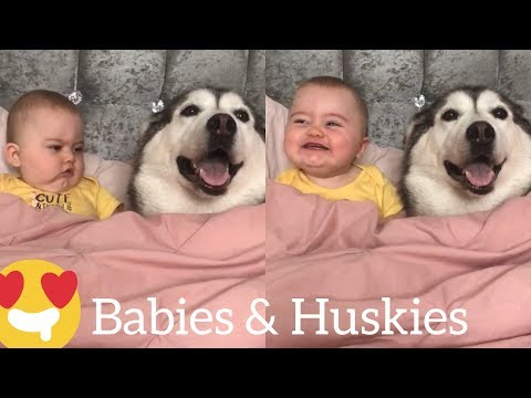 Happy 18 months Baby Parker!! [CUTEST VIDEO EVER]