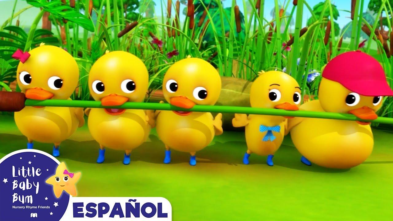 Seis Patitos - Canciones Infantiles   Dibujos Animados   Little Baby Bum en Español