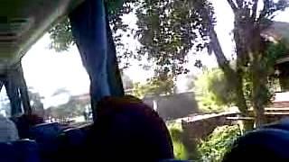Singing on bus
