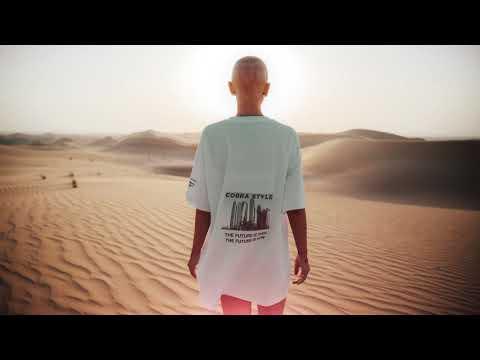 Faylasuf - Cobra Style mp3 indir