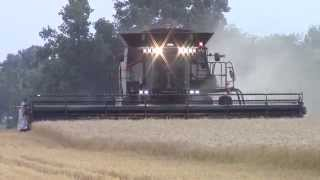 Gleaner S78 Harvesting Wheat
