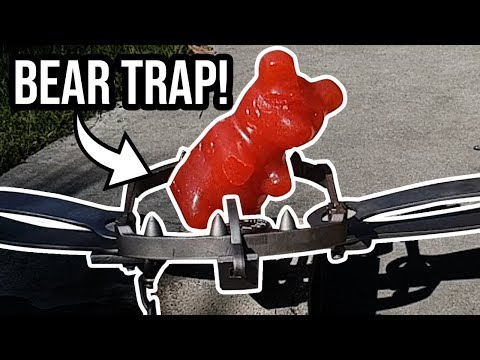 Giant Gummy Bear in a Bear Trap!! - The Dudesons