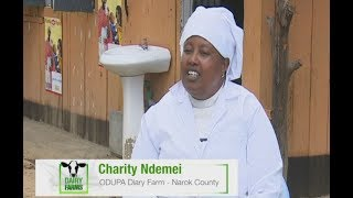 Maasai women milk cash from yoghurt business – Odupa Part 1