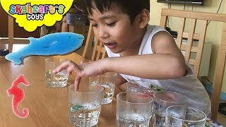 Growing SEA CREATURES Experiment on Water | Transform animal capsules, shark, dolphin