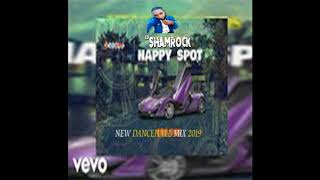 HAPPY SPOT ( NEW DANCEHALL MIX 2019 ) NOVEMBER / TEEJAY / SHU SHU / VYBZ KARTEL