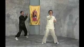 [T.W.C.]  Shil Lim Tao form - Grandmaster William Cheung & Master Eric Oram.