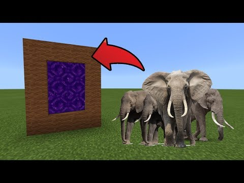 How To Make A Portal To The Elephants Dimension In MCPE (Minecraft PE)