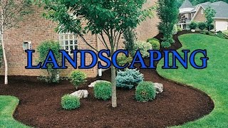 Landscaping Vanity Phone Numbers