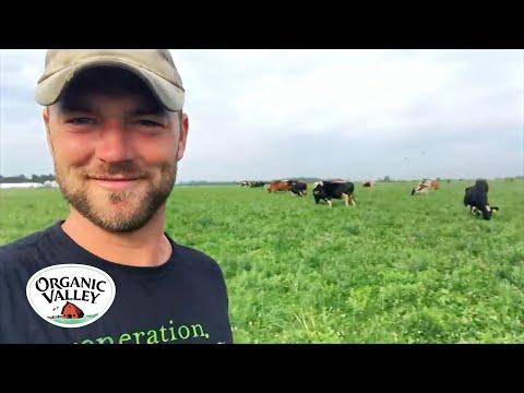 Organic Dairy Farm Tour | Jordan Settlage | Organic Valley