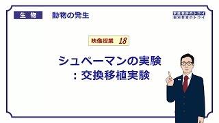 【高校生物】 動物の発生18 シュペーマンの実験:交換移植実験(16分)
