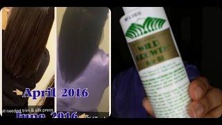 Grow Hair Fast | Wild Hair Growth Oil
