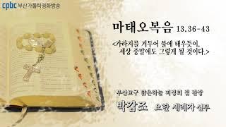 오늘의 강론(2021.07.27) - 부산교구 맑은하늘…