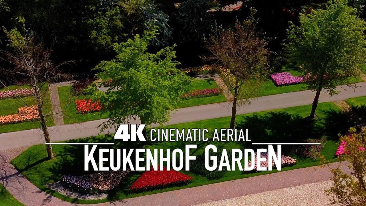 KEUKENHOF 2020 Drone 4K   World's Biggest Flower Garden in Ultra HD Holland