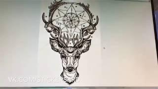 видео Полноцветная печать на самоклеющейся пленке