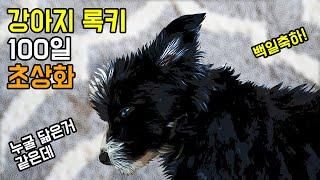 100일 강아지 초상화 팝아트 포토샵 | 보더콜리푸들 …