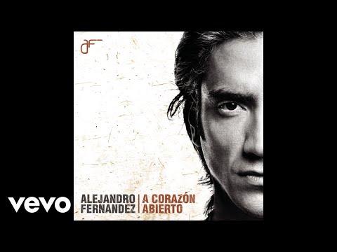 Alejandro Fernández - Qué Voy A Hacer Con Mi Amor (Cover Audio)