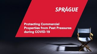 Protecting Commercial Properties from Pest Pressures during COVID-19