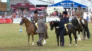 Pencampwriaeth Tan Gyfrwy y Gymdeithas | Supreme Mounted Championship