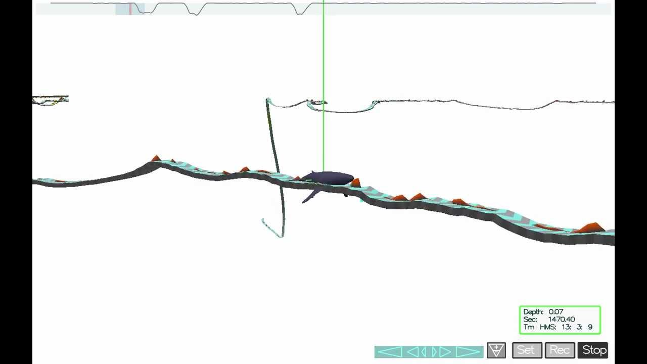 Trackplot video of fine scale foraging behavior of a humpback trackplot video of fine scale foraging behavior of a humpback whale in monterey bay pooptronica
